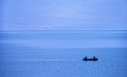 Pelican following fishermen